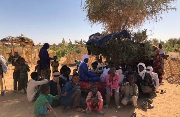 Agroecology training (Niger)