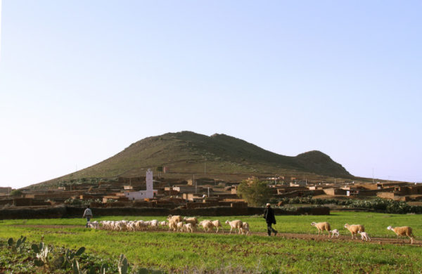 Agroecology training center (Marocco)