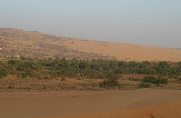 Œuvrer à la création d'un village-modèle à Maaden (Mauritanie)