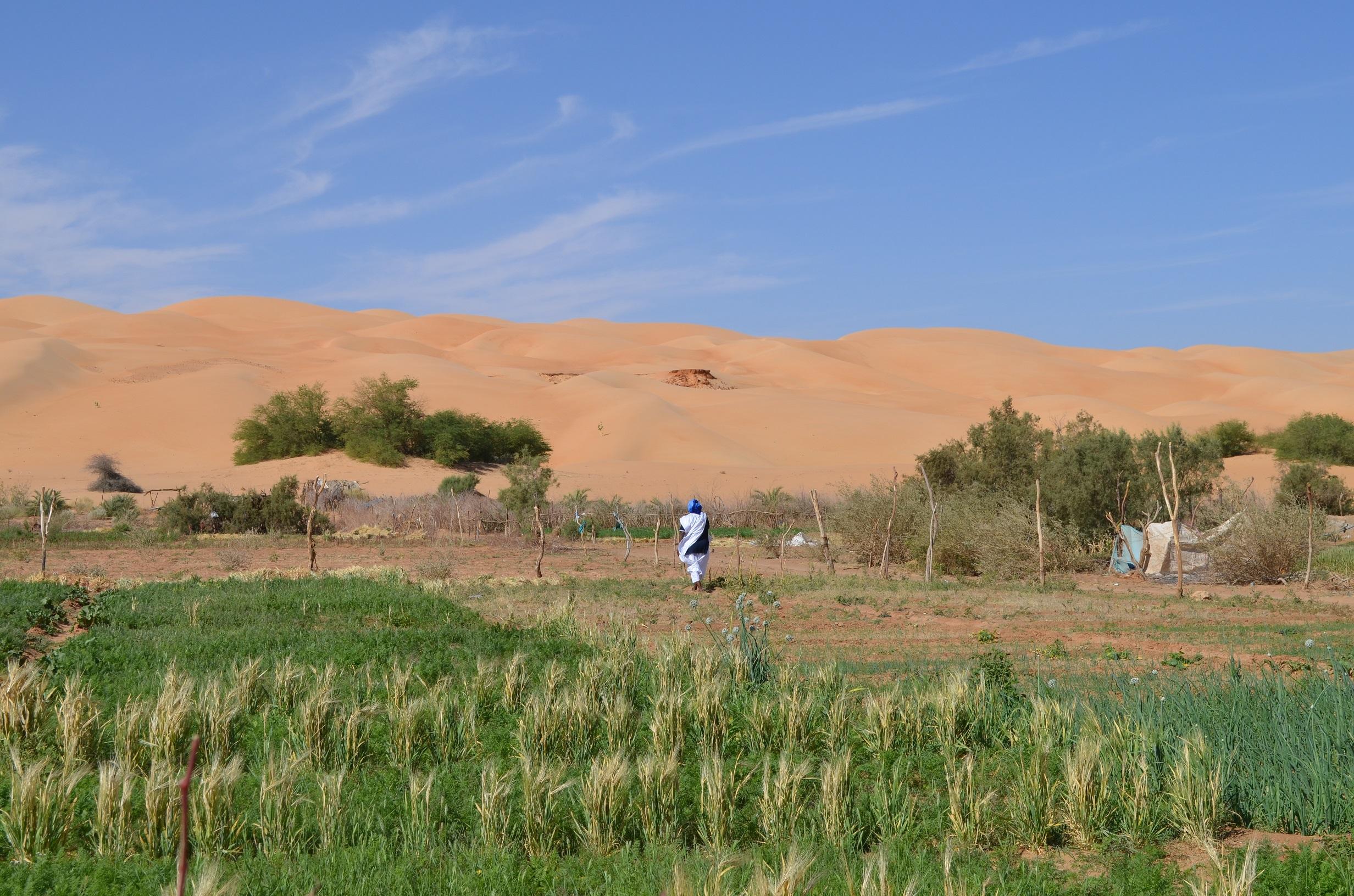 <b>Œuvrer à la création d'un village de référence à Maaden (Mauritanie)