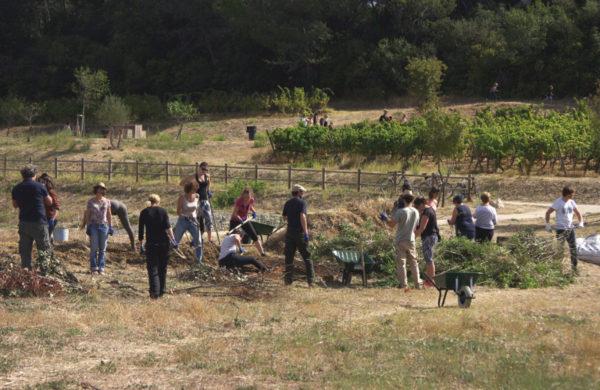 Agroecology Training (France)