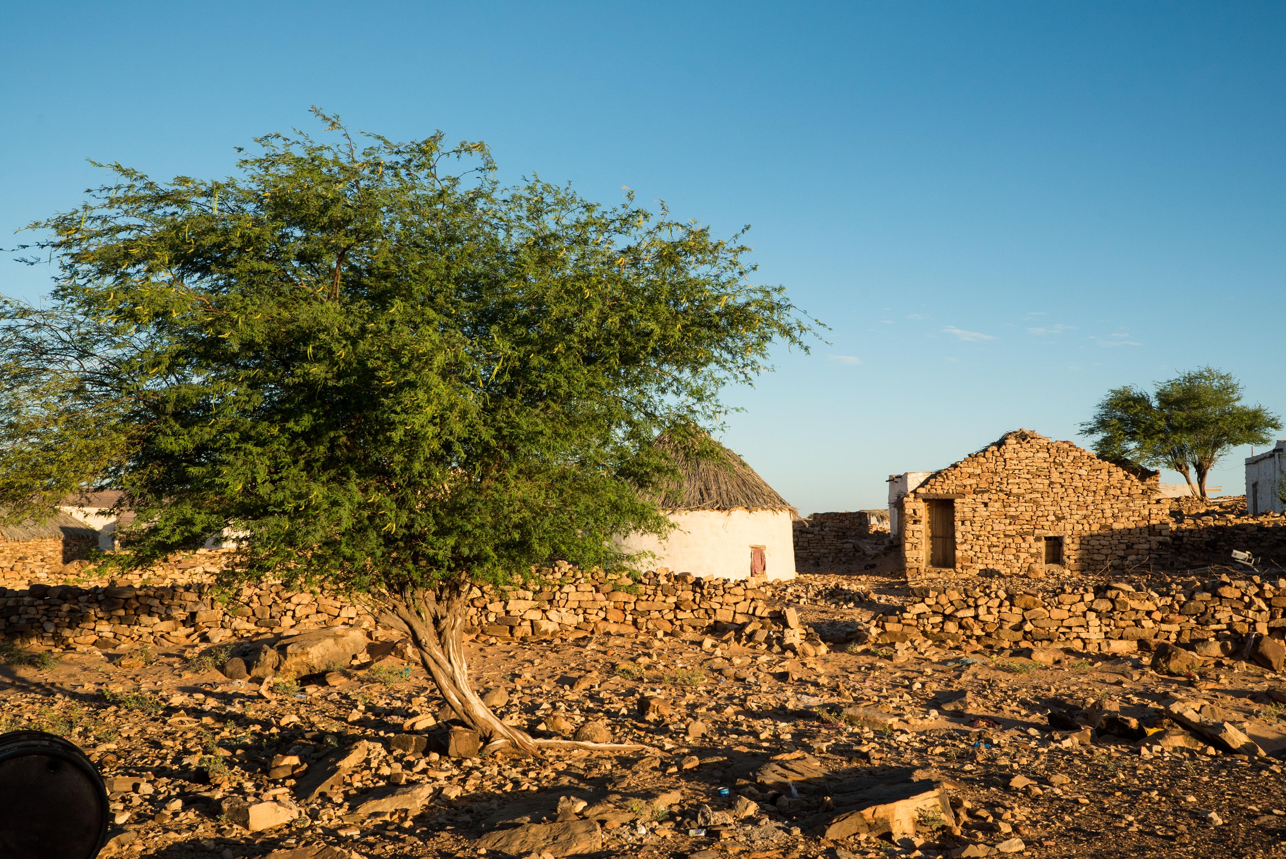 <b>Œuvrer à la création d&#8217;un village-exemple (Mauritanie)