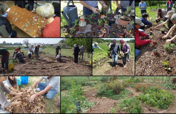 Aider le Carrefour Agroécologique de l'Ouest (Cado) – France